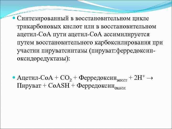 Синтезированный в восстановительном цикле трикарбоновых кислот или в восстановительном ацетил-Со. А пути ацетил-Со.
