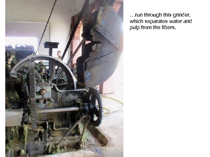 …run through this grinder, which separates water and pulp from the fibers,
