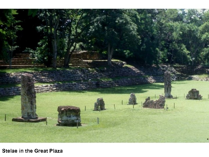 Stelae in the Great Plaza