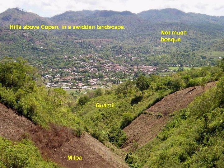 Hills above Copan, in a swidden landscape. Guamil Milpa Not much bosque