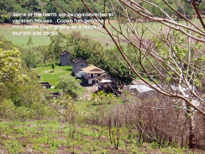 Some of the barns are being converted to vacation houses. Copan has become a