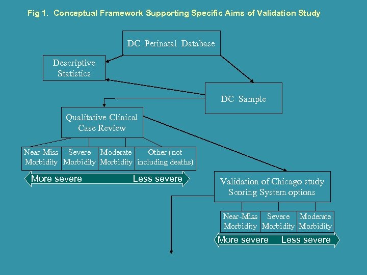 Fig 1. Conceptual Framework Supporting Specific Aims of Validation Study DC Perinatal Database Descriptive