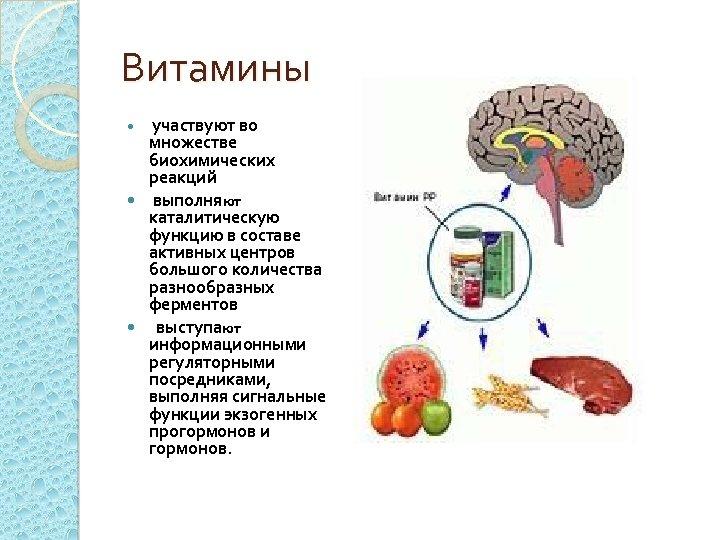 Витамины участвуют во множестве биохимических реакций выполняют каталитическую функцию в составе активных центров большого