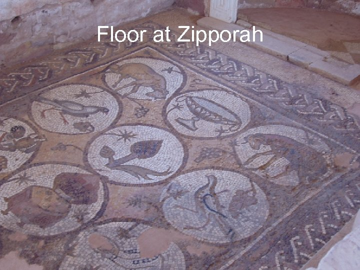 Floor at Zipporah