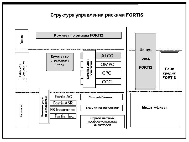 Структура управления рисками FORTIS Группа Комитет по рискам FORTIS Комитет упр-я страхованием Бизнесы Банк