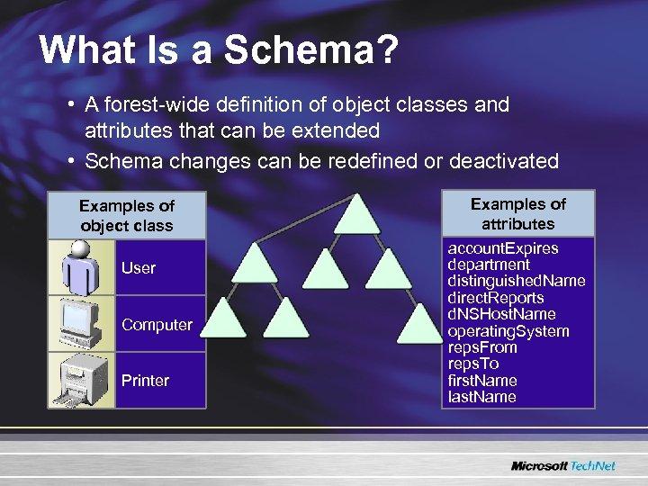 What Is a Schema? • A forest-wide definition of object classes and attributes that