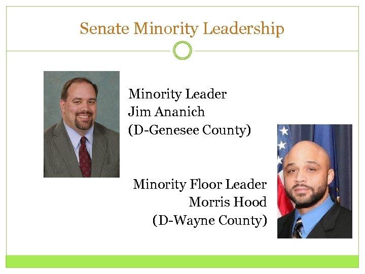 Senate Minority Leadership Minority Leader Jim Ananich (D-Genesee County) Minority Floor Leader Morris Hood