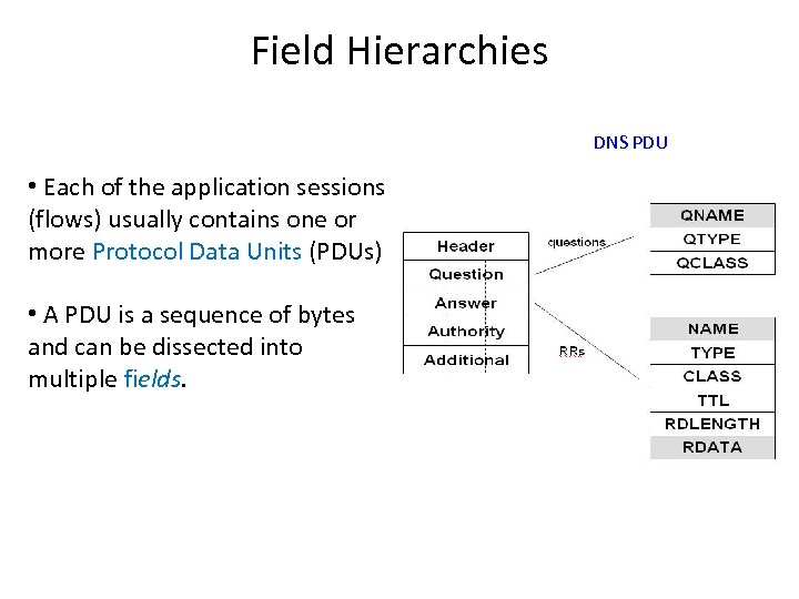 Field Hierarchies DNS PDU • Each of the application sessions (flows) usually contains one