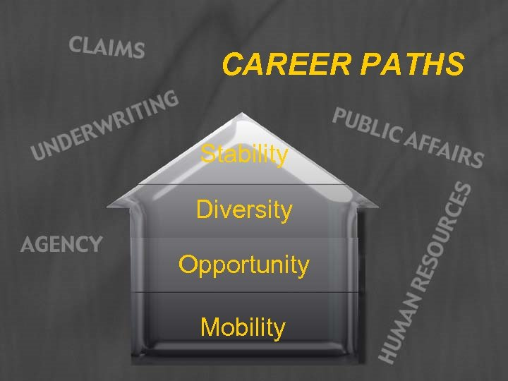 CAREER PATHS Stability Diversity Opportunity Mobility