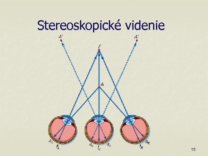 Stereoskopické videnie 15