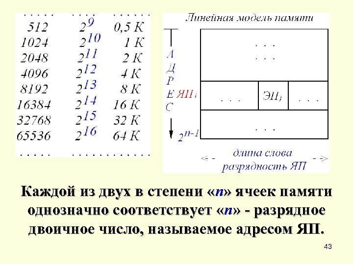 Каждой из двух в степени «n» ячеек памяти Каждой из двух в степени «