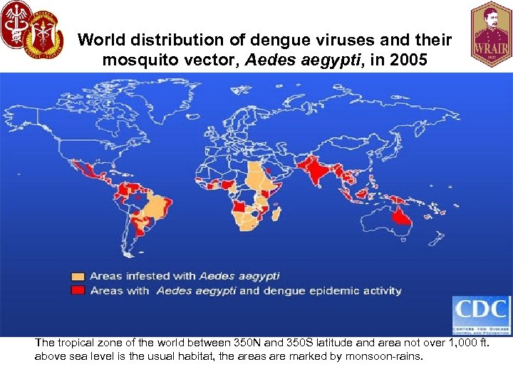 World distribution of dengue viruses and their mosquito vector, Aedes aegypti, in 2005 The