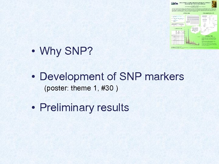 • Why SNP? • Development of SNP markers (poster: theme 1, #30 )
