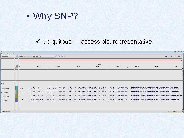 • Why SNP? ü Ubiquitous — accessible, representative