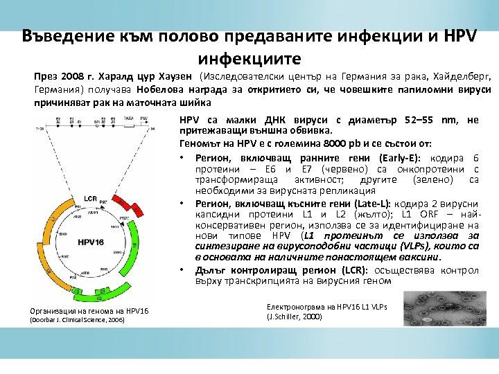 Въведение към полово предаваните инфекции и HPV инфекциите През 2008 г. Харалд цур Хаузен