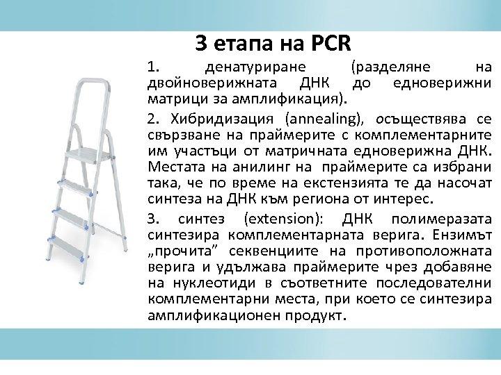3 етапа на PCR 1. денатуриране (разделяне на двойноверижната ДНК до едноверижни матрици за