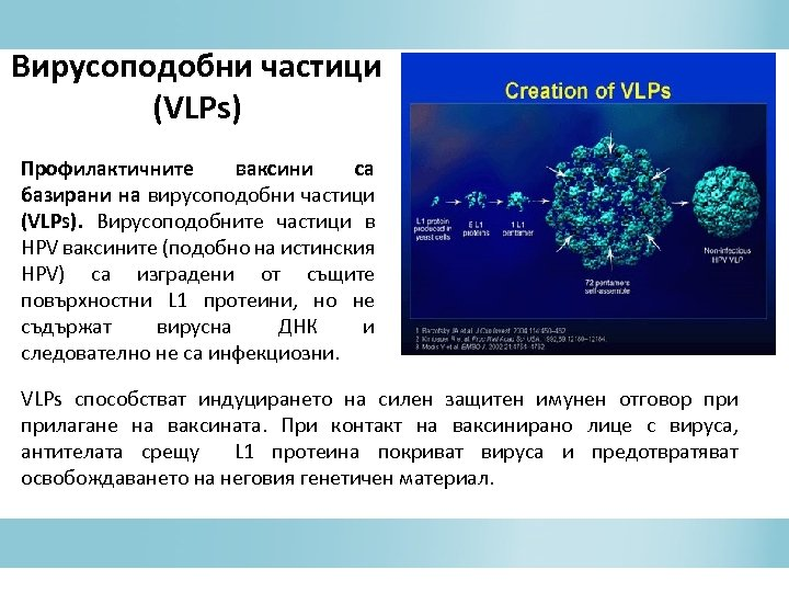 Вирусоподобни частици (VLPs) Профилактичните ваксини са базирани на вирусоподобни частици (VLPs). Вирусоподобните частици в