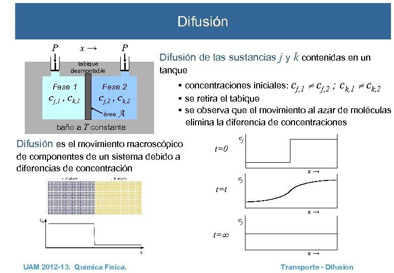 Difusión x→ P P tabique desmontable Difusión de las sustancias j y k contenidas