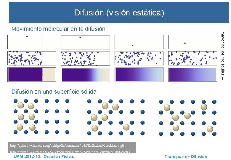 Difusión (visión estática) mayor no. de moléculas → Movimiento molecular en la difusión Difusión