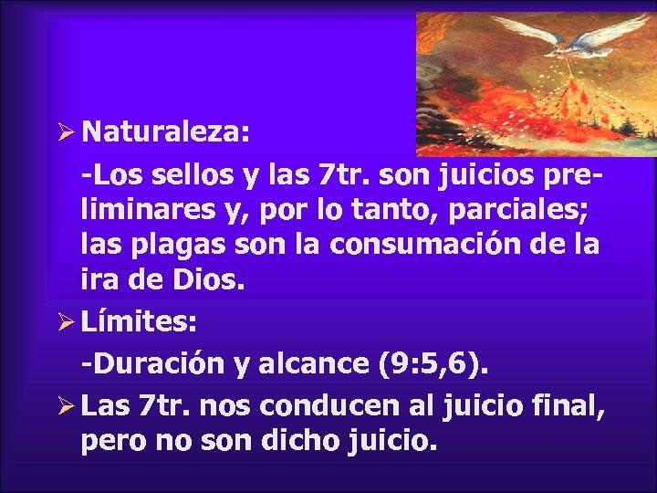 Ø Naturaleza: -Los sellos y las 7 tr. son juicios preliminares y, por lo