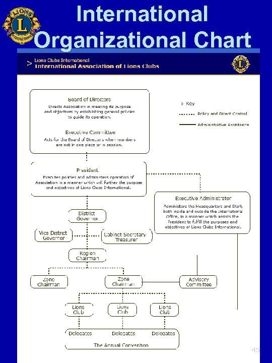 International Organizational Chart 45