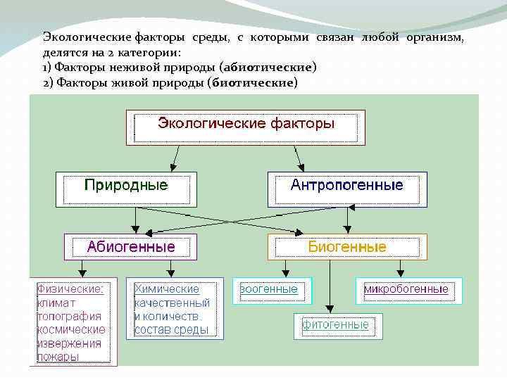 Экологические факторы среды, с которыми связан любой организм, делятся на 2 категории: 1) Факторы