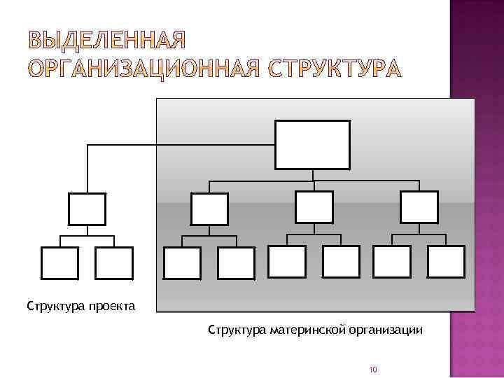 Структура проекта Структура материнской организации 10