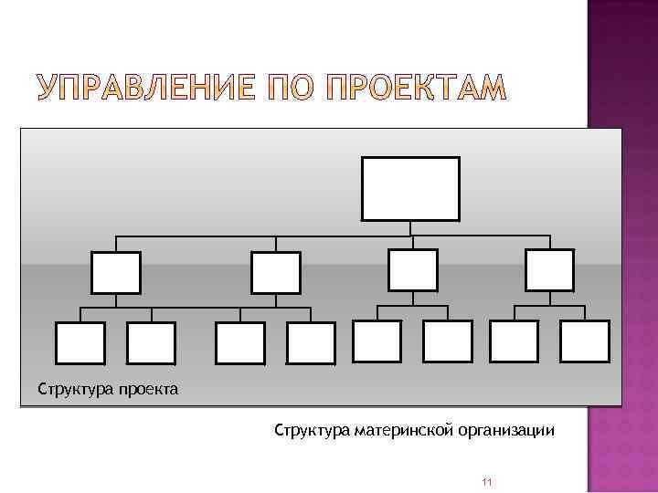 Структура проекта Структура материнской организации 11