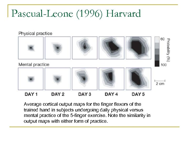Pascual-Leone (1996) Harvard Average cortical output maps for the finger flexors of the trained