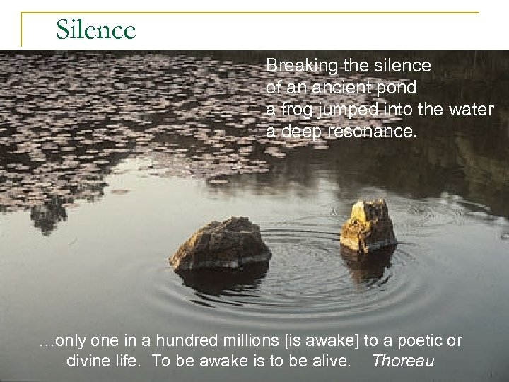 Silence Breaking the silence of an ancient pond a frog jumped into the water