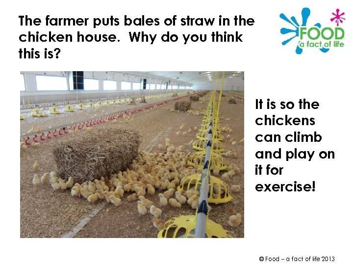 The farmer puts bales of straw in the chicken house. Why do you think
