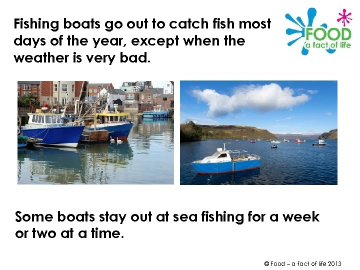 Fishing boats go out to catch fish most days of the year, except when