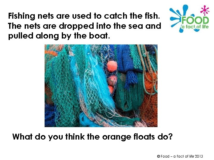 Fishing nets are used to catch the fish. The nets are dropped into the
