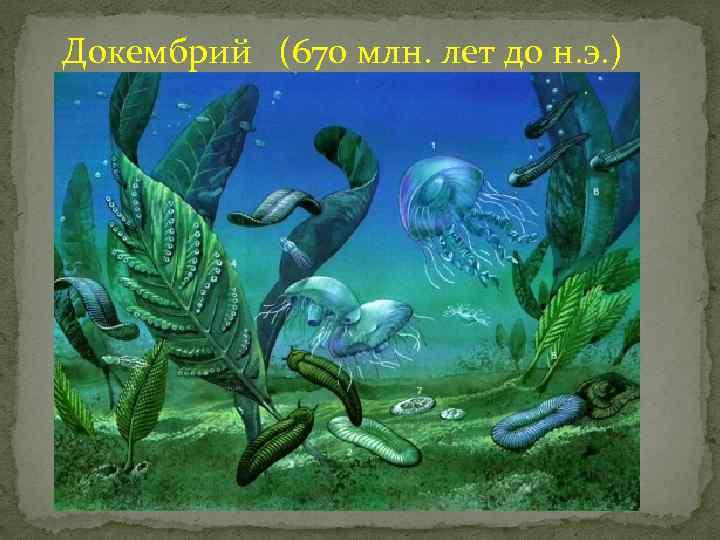 Докембрий (670 млн. лет до н. э. )