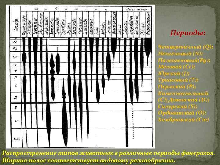Периоды: Четвертичный (Q); Неогеновый (N); Палеогеновый(Pg); Меловой (Cr); Юрский (J); Триасовый (Т); Пермский (Р);
