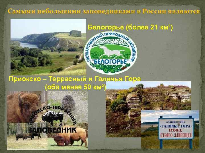 Самыми небольшими заповедниками в России являются Белогорье (более 21 км²) Приокско – Террасный и