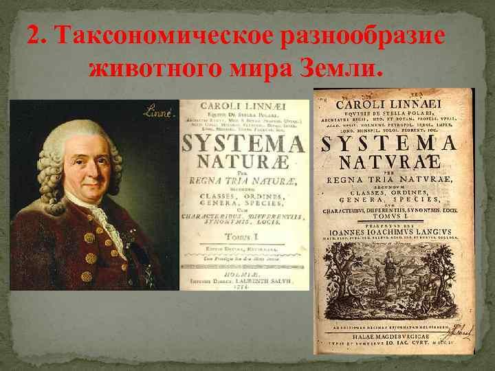 2. Таксономическое разнообразие животного мира Земли.
