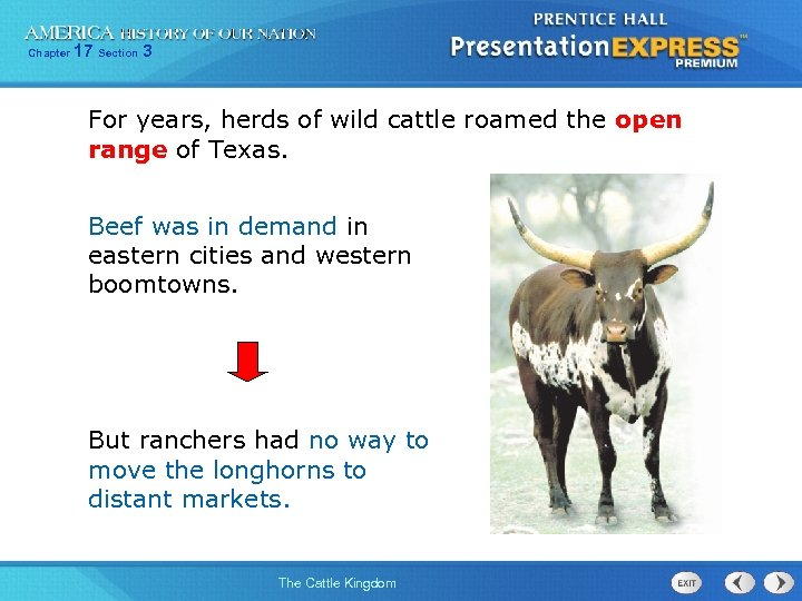 Chapter 17 Section 3 For years, herds of wild cattle roamed the open range