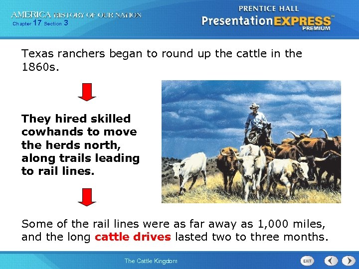 Chapter 17 Section 3 Texas ranchers began to round up the cattle in the