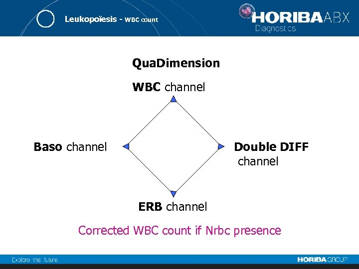 Leukopoïesis - WBC count Qua. Dimension WBC channel Baso channel Double DIFF channel ERB