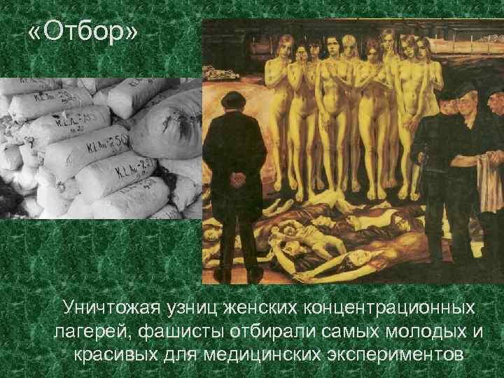 «Отбор» Уничтожая узниц женских концентрационных лагерей, фашисты отбирали самых молодых и красивых для