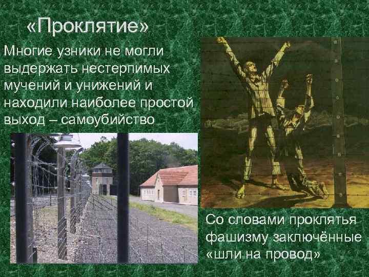 «Проклятие» Многие узники не могли выдержать нестерпимых мучений и унижений и находили наиболее