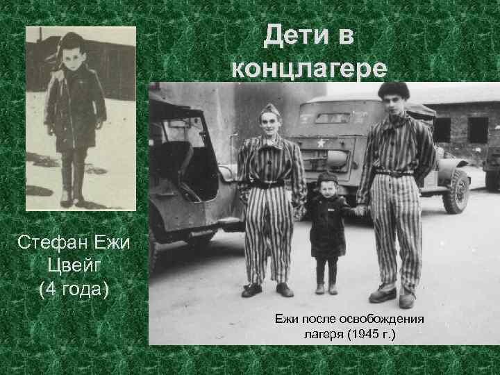 Дети в концлагере Оторванные от родителей, испытывая все ужасы концлагеря, большинство из детей погибло