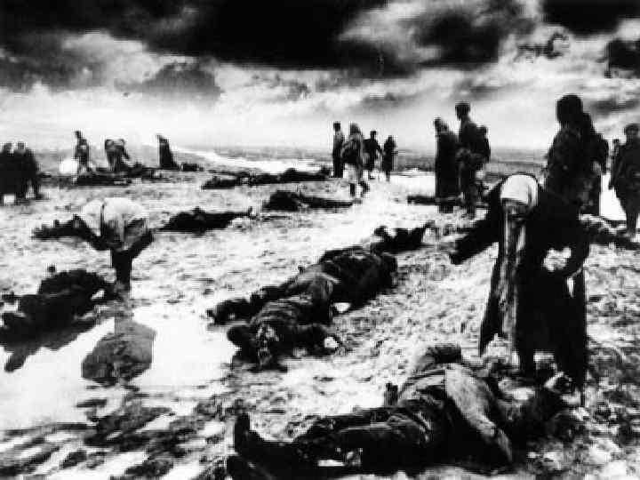 Среди изуродованных мёртвых тел – жертв лагеря смерти – женщины опознают своих сыновей, мужей,