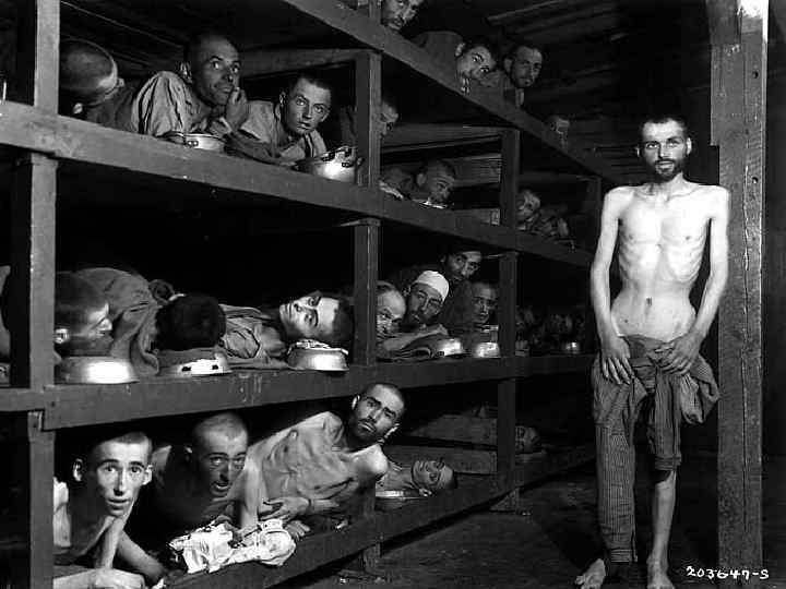 Нечеловеческие условия существования, голод, непосильный труд, побои привели к массовой смертности. Около 10 000