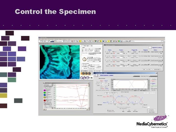 Control the Specimen