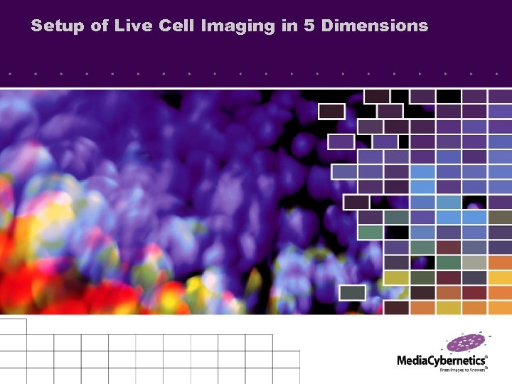 Setup of Live Cell Imaging in 5 Dimensions