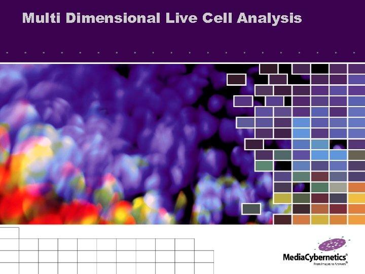 Multi Dimensional Live Cell Analysis