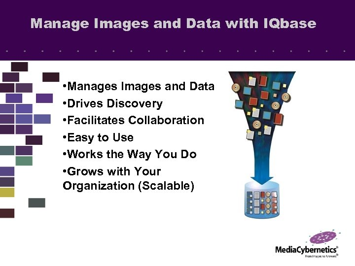Manage Images and Data with IQbase • Manages Images and Data • Drives Discovery