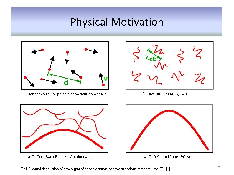 Physical Motivation 1. High temperature particle behaviour dominated 3. T=Tcrit Bose Einstein Condensate 2.